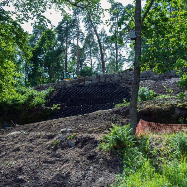 Spevnenie svahu drevinami Bratislava Zemné-Výškové